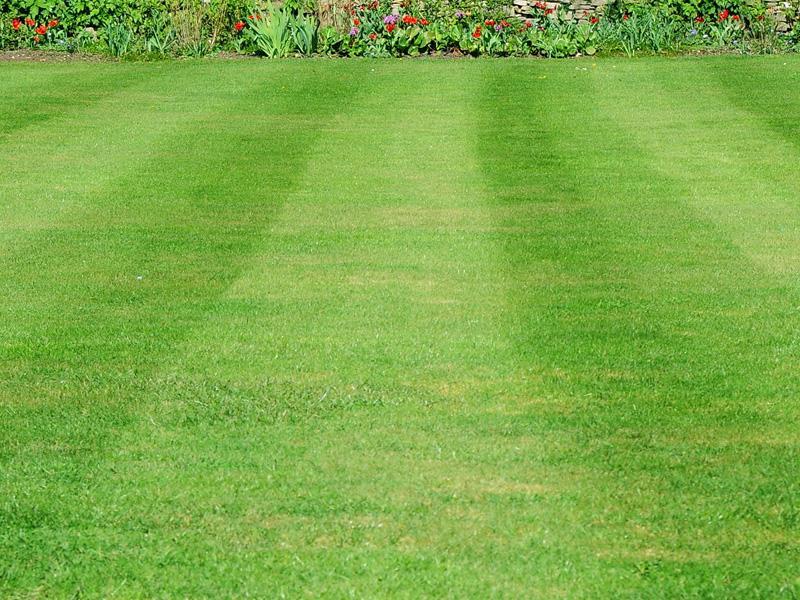 Consigli garden sitter giardiniere a torino progetto - Quando seminare erba giardino ...